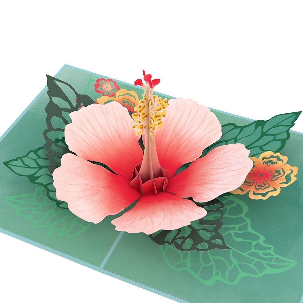 Hibiskusblüte, Pop-Up Karte