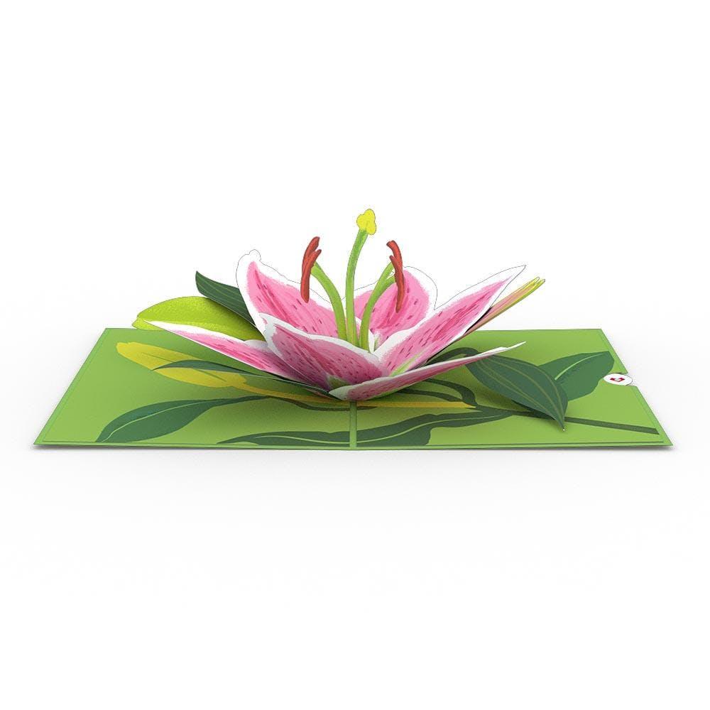 Lilienblüte, Pop-Up Karte