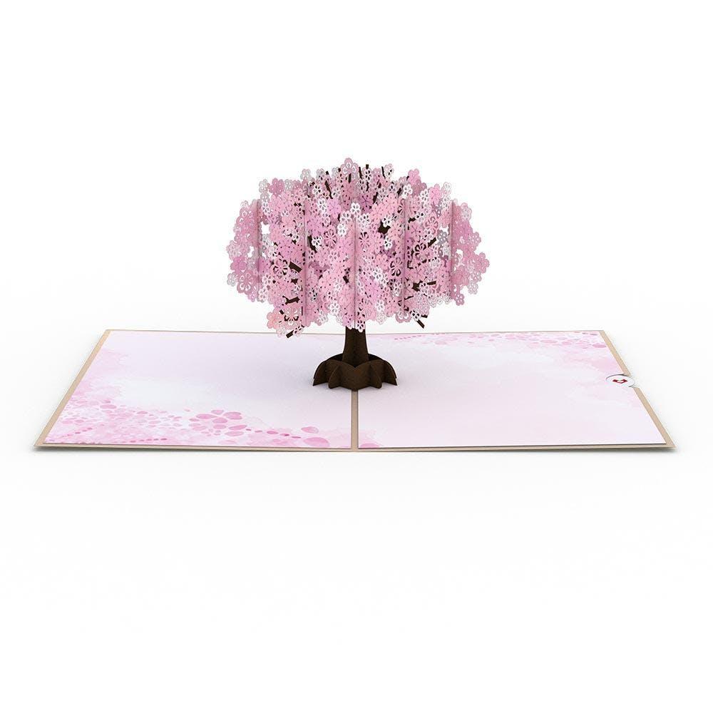 Kirschblüte,  Pop-Up Karte