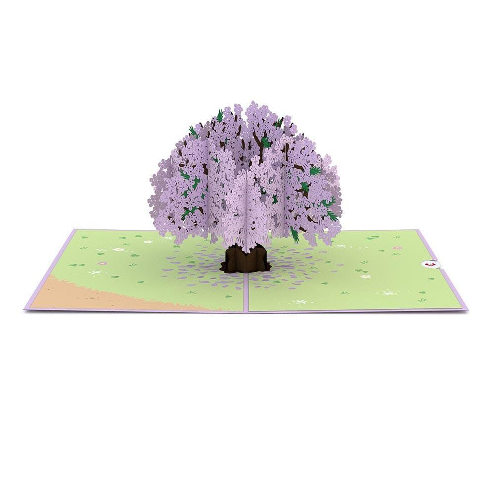 Jacaranda-Baum, Pop-Up Karte