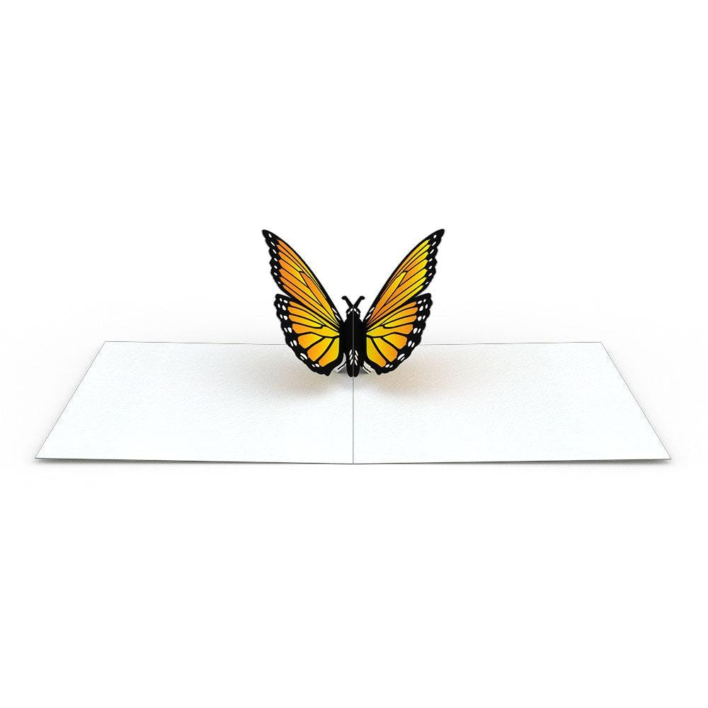 Schmetterlings-Notizkarten (4er-Pack), Bundle