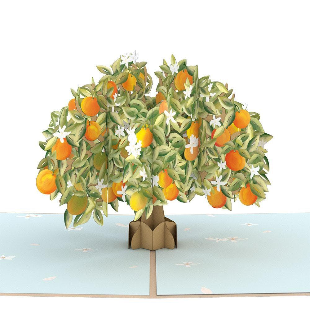 Orangenbaum, Pop-Up Karte