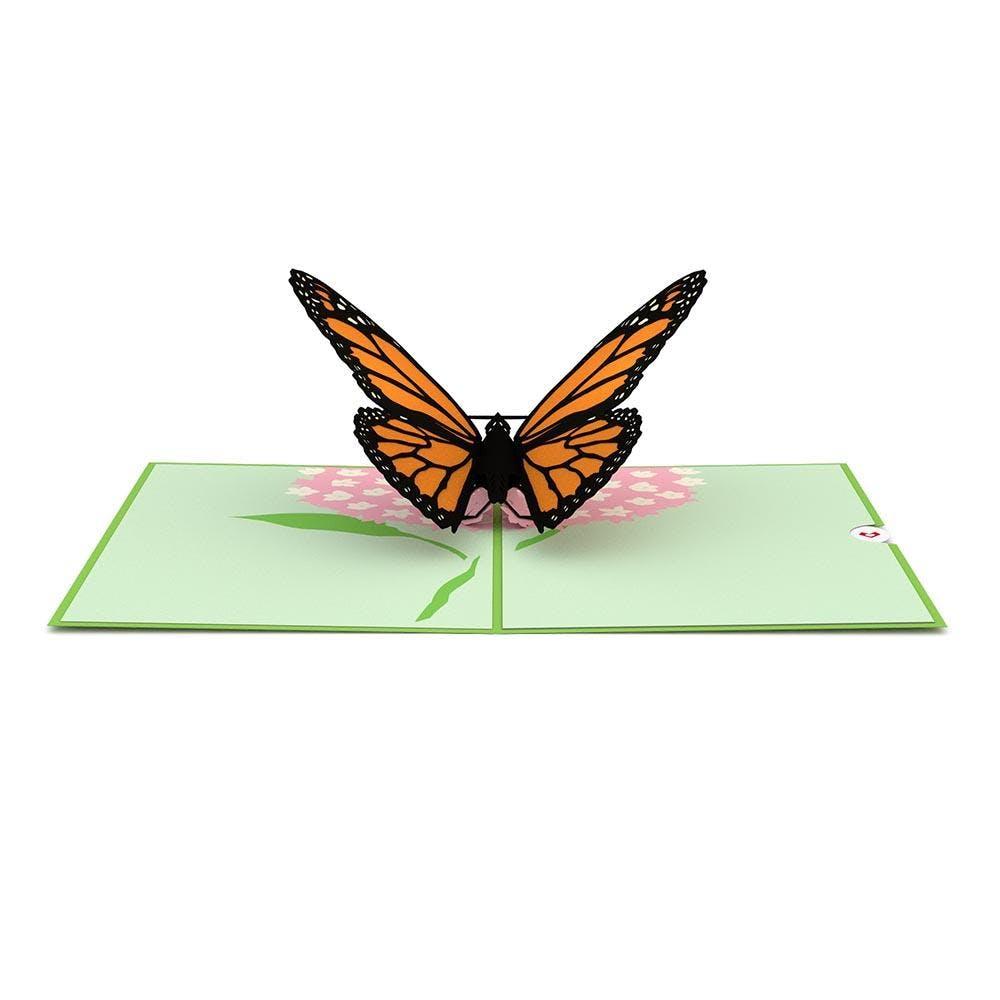 Schmetterling,  Pop-Up Karte