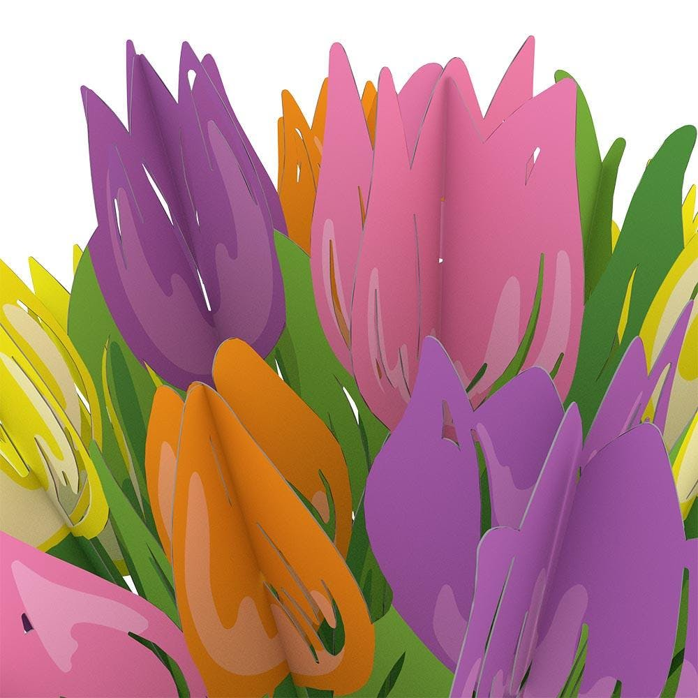 Tulpen, Pop-Up Blumen