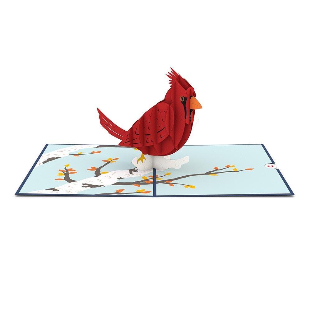 Kardinal Vogel, Pop-Up Karte